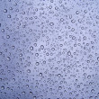 Raindrops 02 - Stock Photo