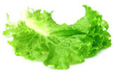 Fresh lettuce — Stockfoto