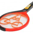 Stock Photo: Mosquito killing racket