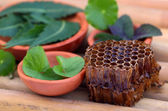 Medicinal herbs with honey comb — Stock Photo