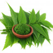 Stock Photo: Medicinal neem leaves with paste on brown bowl