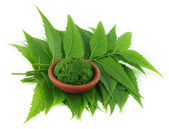 Medicinal neem leaves with paste on a brown bowl — Stock Photo