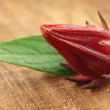 Stock Photo: Roselle with green leaf