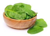 Pile of fresh spinach — Stockfoto