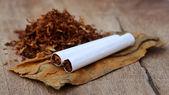 Tabaco e cigarros — Foto Stock