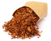 Tobacco for making cigarette — Stock Photo