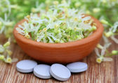 Pills made from flower — Stock Photo