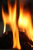Burnign coal — Stock Photo