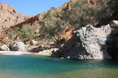 Mountain's landscape. Wadi in Oman — Foto Stock