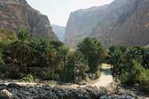 Paisaje de la montaña. Wadi en Omán — Foto de Stock