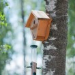 Birdhouse and  bird table - Stock Photo