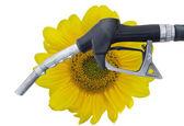 Biofuel — Stock Photo
