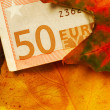 Stock Photo: Fifty euro banknote between autumn leaves