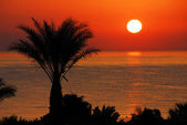 Prachtige zonsopgang boven zee — Stockfoto