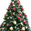 Christmas tree outdoor — Stock Photo