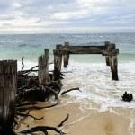 Old rotten pier piles — Stock Photo #51041547