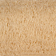 Natural luff sponge texture - Stock Photo