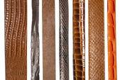 Closeup of various leather belts — Stock Photo