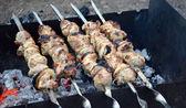 Shish kebab on the grill — Stock Photo