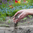 Gardener hands with soil — Stock Photo #30562775
