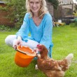 Woman feeding chicken — Stock Photo