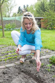Woman putting seeds in vegetable garden — Stock Photo