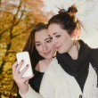 Stockfoto: Smiling girlfriends