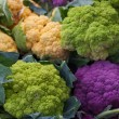 Purple Green Orange Cauliflower — Stock Photo #12510485