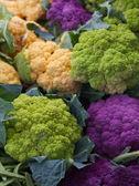 Purple Green Orange Cauliflower — Stock Photo