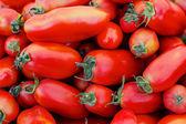 Italian Tomatoes — Stock Photo