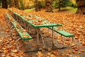 Uzun sonbahar piknik masası — Stok fotoğraf