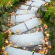 Downward leading steps — Stock Photo
