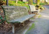 Perspektywy ławki w parku — Zdjęcie stockowe