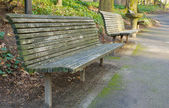 Park Bench perspective Deeper DOF — Stock Photo