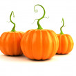 Illustration of a big, orange, pumpkin — Stock Photo