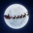 Illustration of santa with his sleigh — Stock Photo