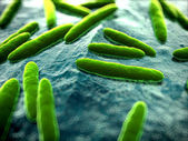 Illustration of some bacteria — Stock Photo