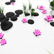 Illustration with stones and flowers — Stock Photo