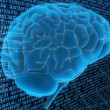 Digital brain — Stock Photo #12445829