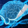 Stock Photo: 3d illustration - brain and cable