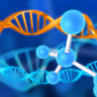 Dna — Stock Photo #12446255