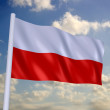 Poland flag — Stock fotografie