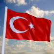 National flag of turkey — Stock Photo
