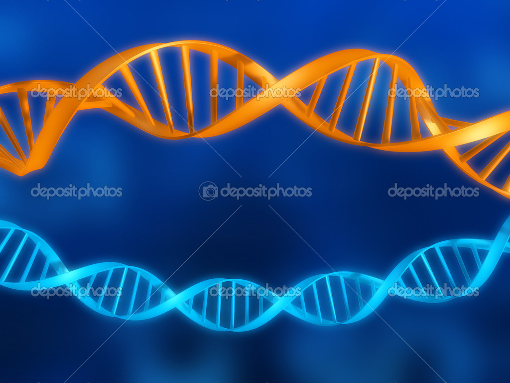 Illustrations -  dna   Stock Photo #12446252