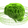 Green brain - Foto de Stock