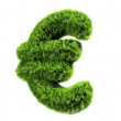 Grass euro — Stock Photo