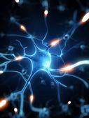 神经细胞 — 图库照片