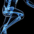 Runner anatomy on a black background - Stock fotografie