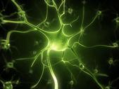 нервных клеток — Стоковое фото