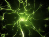 Cellule nerveuse — Photo